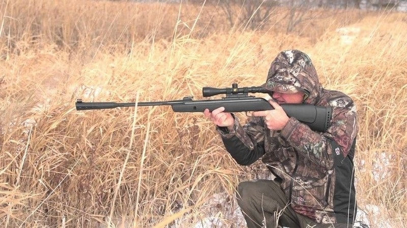 Best Break Barrel Air Rifle that hits like a champ - Air Gun