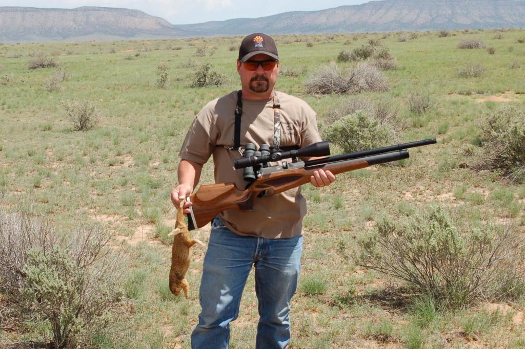 best pcp air rifle in 2019 for hunting