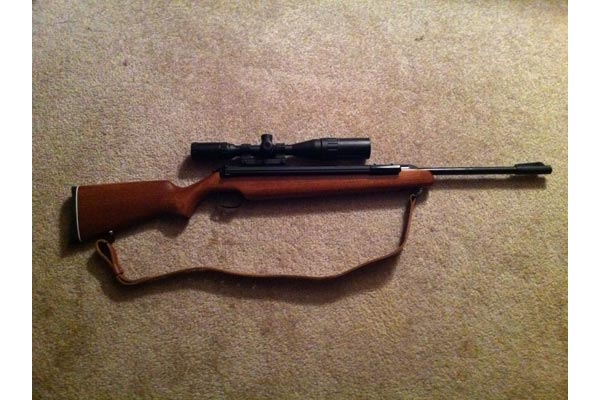 diana rws 48 air rifle stock