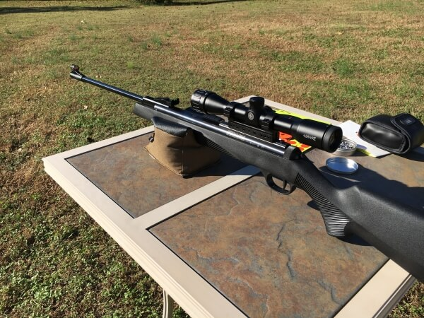 diana rws 34p pro compact - the best air rifle under $500