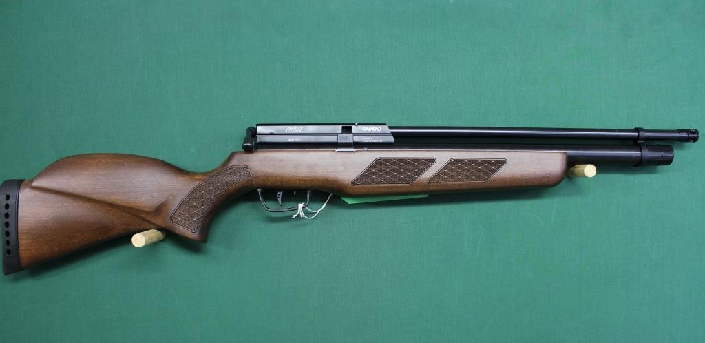 the gamo coyote whisper is an excellent purchase for beginners and intermediate shooters