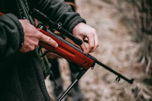 How to choose a hunting squirrels air rifle