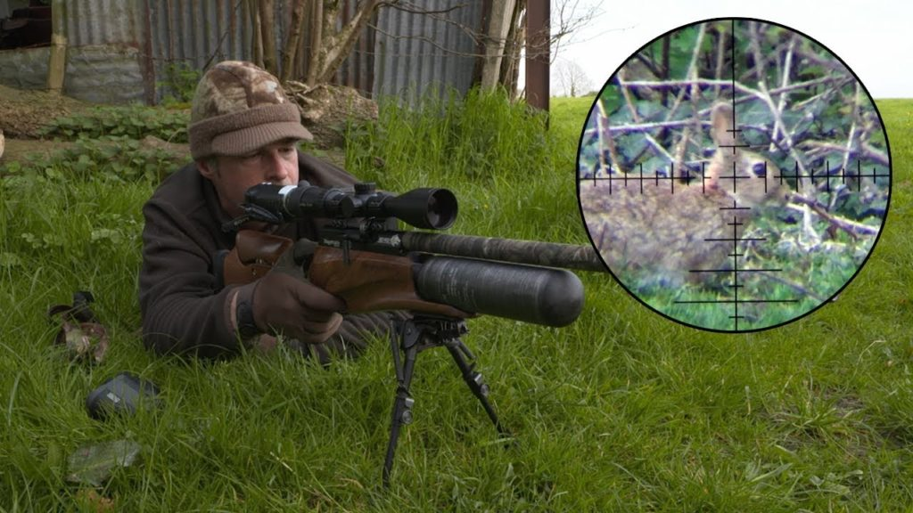 rabbit 1 The Bunny Buster: Best Air Rifle For Rabbits (2020)