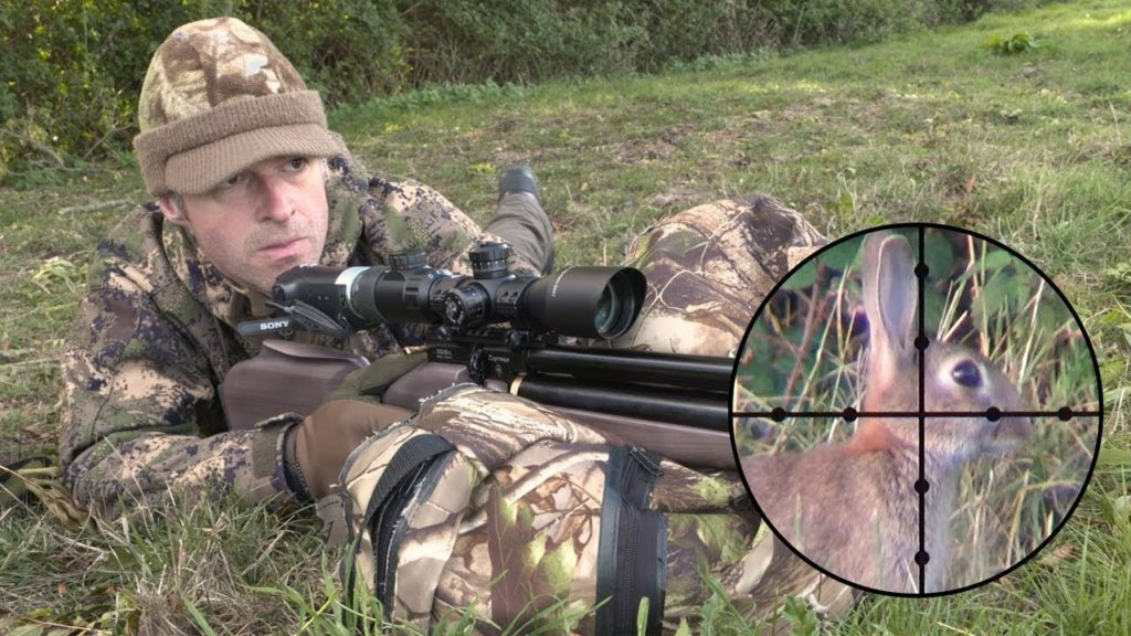 rabbit3 1 The Bunny Buster: Best Air Rifle For Rabbits (2020)