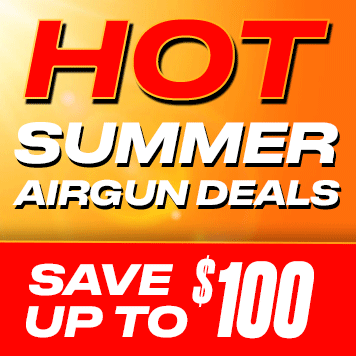 summer 1 Best Air Rifle Deals (Updated August - 2020)