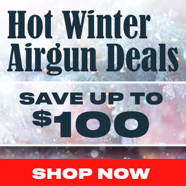 wt Best Air Rifle Deals - Countdown to Black Friday (Updated November - 2020)