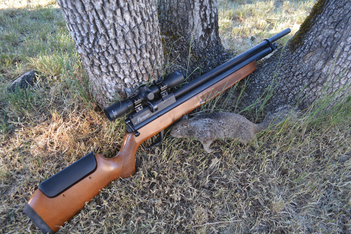 b11 Benjamin Marauder Wood Stock (Gen 1) Review - The Best Name in The Air Rifle Game