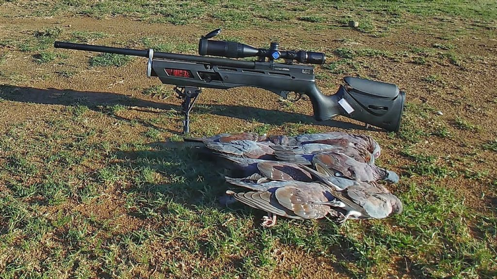 g11 Best Air Rifles Under $500: Level Up Your Shooting Skills!