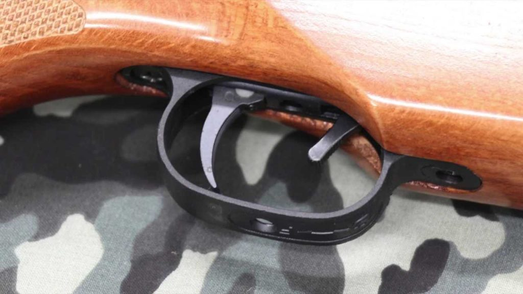 r1 Ruger Yukon Air Rifle Review -  Don't judge the book by its cover