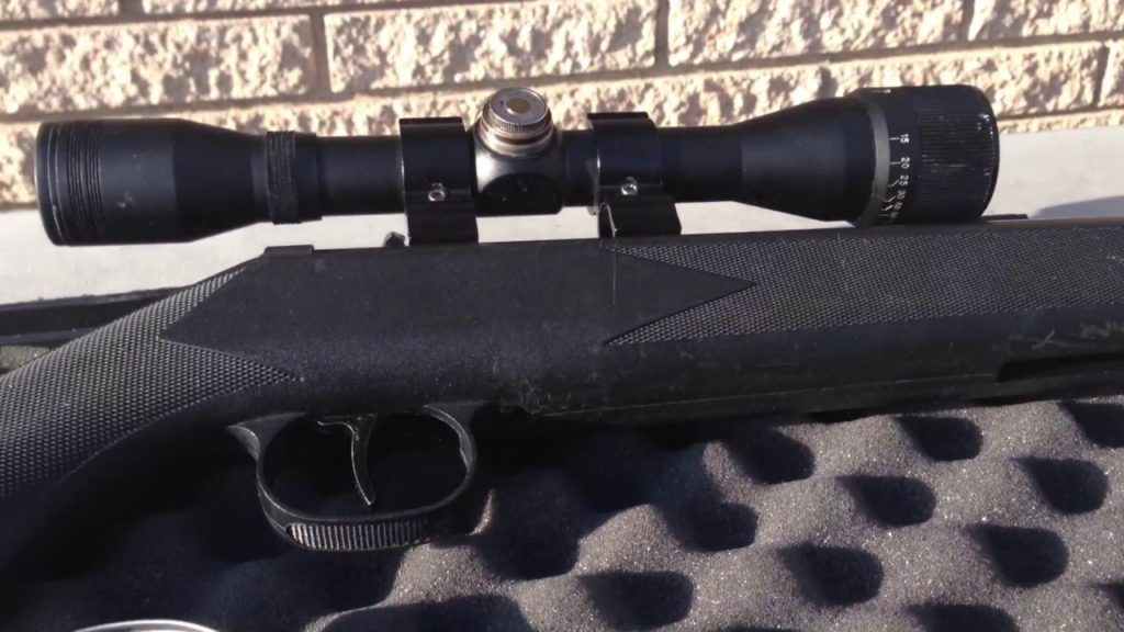 b1 1 Best Air Rifles for Beginners - Top 5 cheap guns in 2021 (Reviews and Buying Guide)