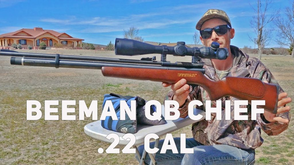 b1 3 Best air rifles under $200 - Affordable Guns for the money (Reviews and Buying Guide 2021)