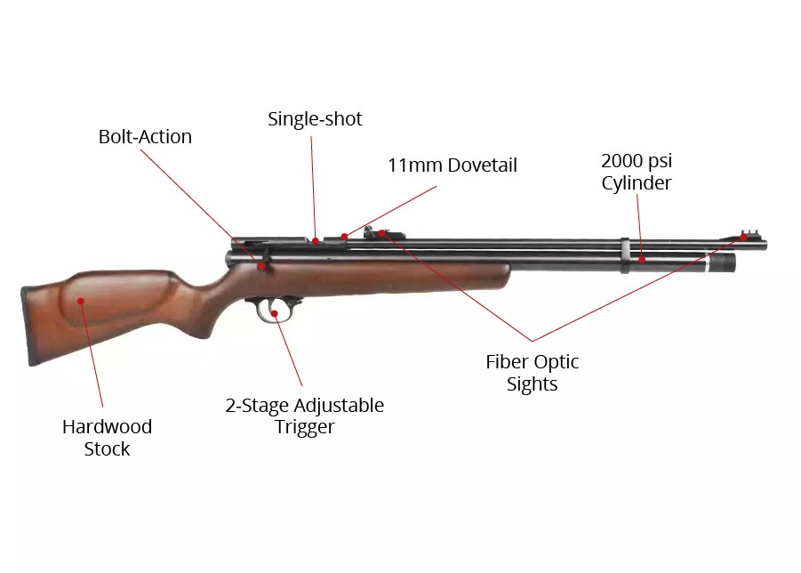 b2 1 Best air rifles under $200 - Affordable Guns for the money (Reviews and Buying Guide 2021)
