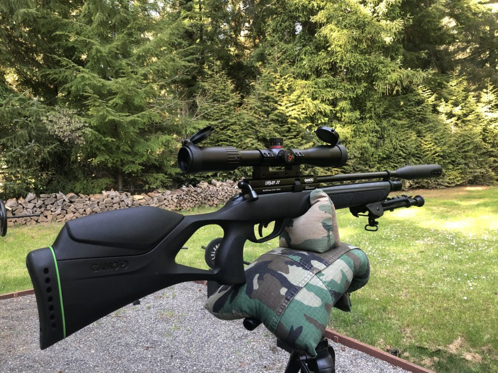g1 2 Best air rifles under $300 (Reviews and Buying Guide 2021)