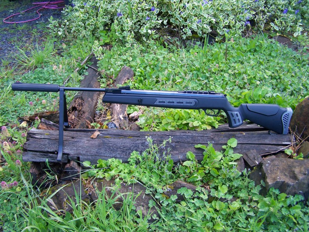 h2 1 Best air rifles under $300 (Reviews and Buying Guide 2021)