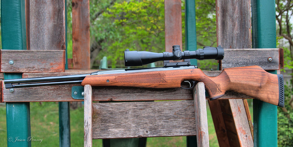 a22 Garden Rescue: Best Air Rifle For Squirrels (Reviews & Buying Guide 2021)