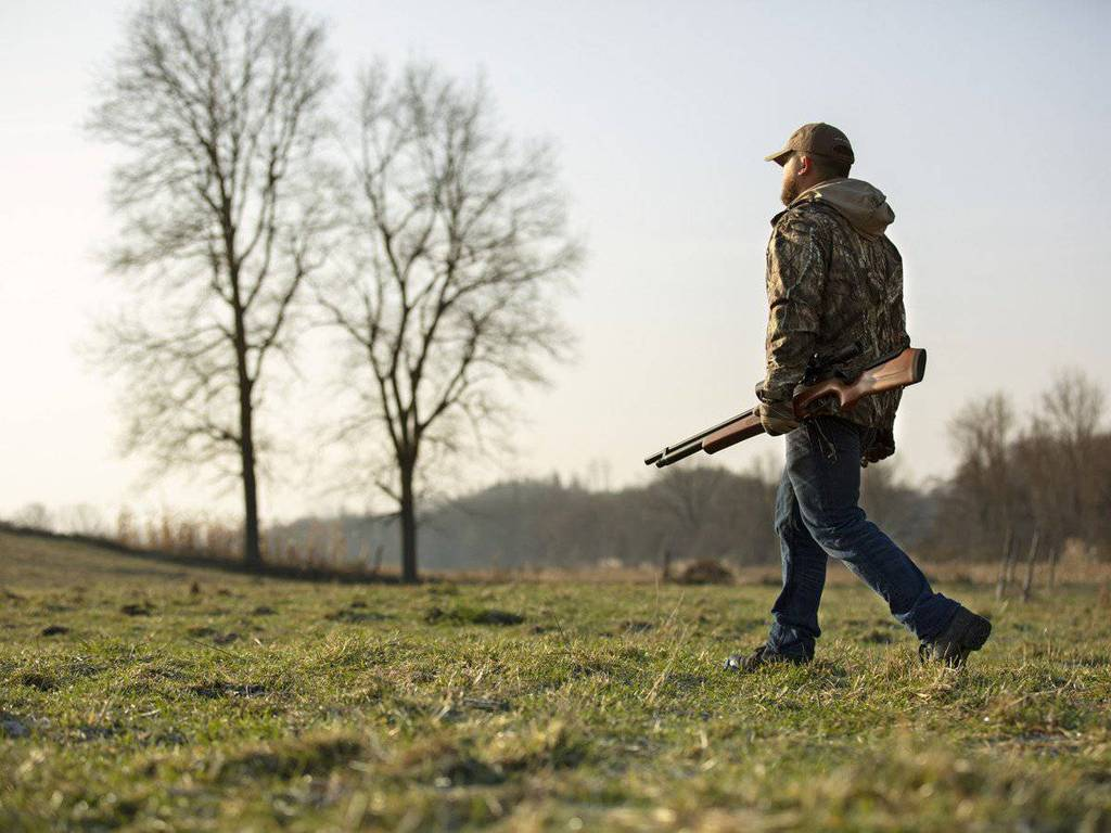 b1 Garden Rescue: Best Air Rifle For Squirrels (Reviews & Buying Guide 2021)