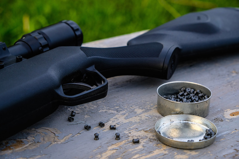 w1 1 Garden Rescue: Best Air Rifle For Squirrels (Reviews & Buying Guide 2021)